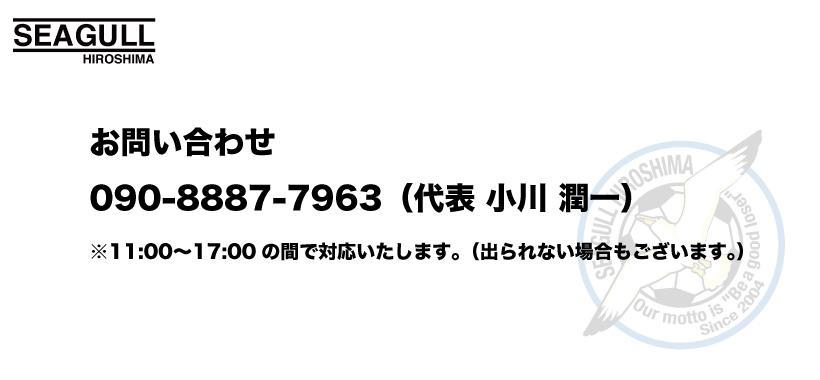 シーガルお問い合わせ.jpg